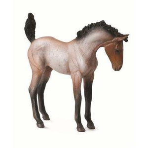 Brumby Foal Bay Roan - Collecta