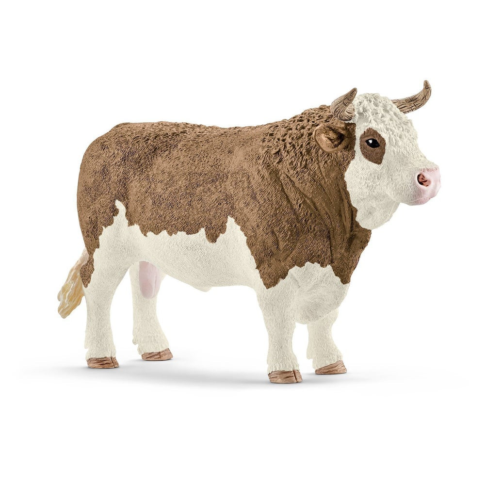 Cattle - Simmental Bull