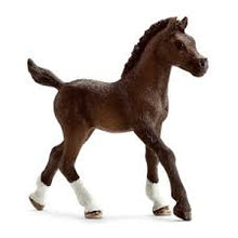 Load image into Gallery viewer, Horses - Arabian Foal - Schleich