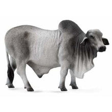 Load image into Gallery viewer, Grey Brahman Bull - Collecta