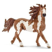 Load image into Gallery viewer, Horses - Pinto Stallion - Schleich