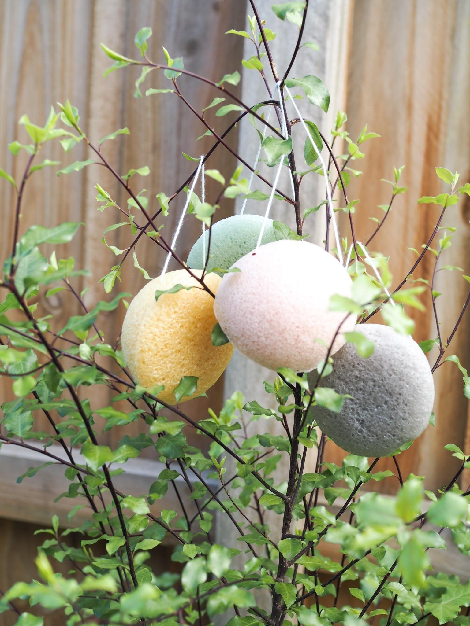 Konjac sponge - Dot and Frankie