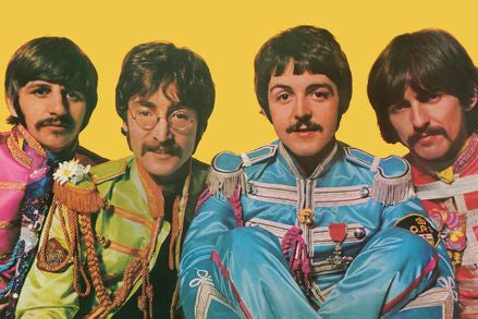 Beatle Moustache