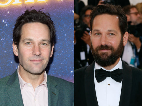 paul rudd beard