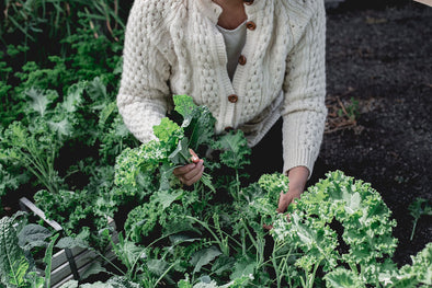 Keep garden kale alive with Abeego beeswax food wraps
