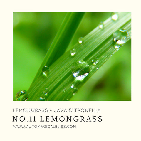 No. 011 Lemongrass