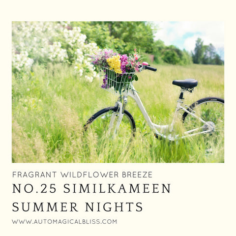 No. 025 Similkameen Summer Nights