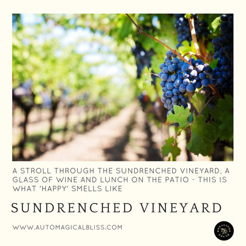 No. 037 Sundrenched Vineyard