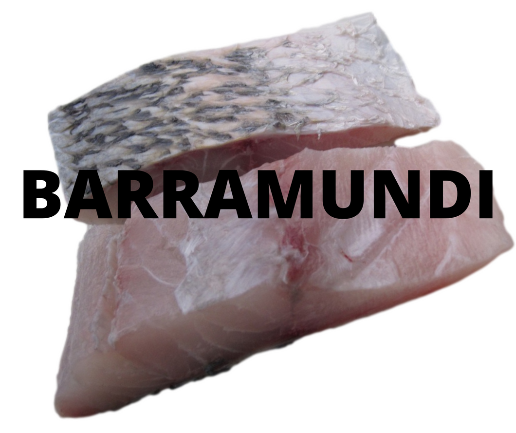 FRESH Barramundi Fillets - skin on (1kg)