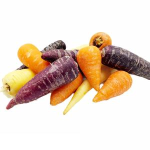 Mixed Colour Baby Carrots 500g