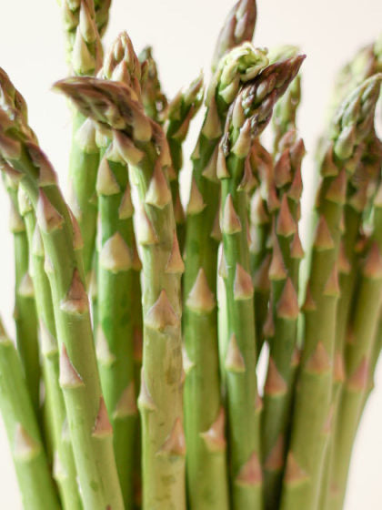 1st of the English Asparagus Limited Stock