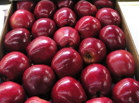 Apples Red 13 Kilo Class 1 Box