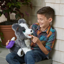 Load image into Gallery viewer, FurReal Friends Ricky The Trick Lovin' Pup Hasbro  Hasbro Brand_Hasbro, category-reference-2571, category-reference-2572, category-reference-2581, category-reference-2662, category-reference-2669, category-reference-2689, for the little ones, hot deals, Price_100 - 200 LotSupplies Marketplace