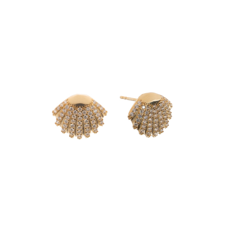 Shell Studs - essentialsjewels.com