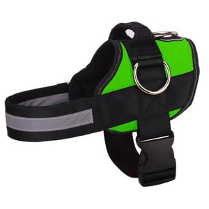 NEW All-In-One™ No Pull Dog Harness green