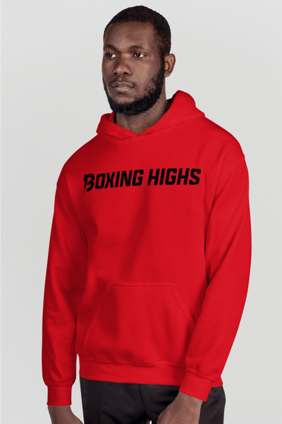 Lightning Back Hoodie - Boxing Highs