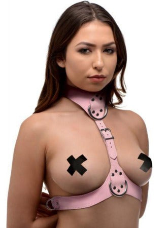 Miss Behaved Pink Chest Harness