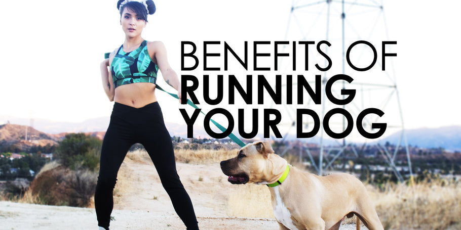 The Benefits of Running with Dogs