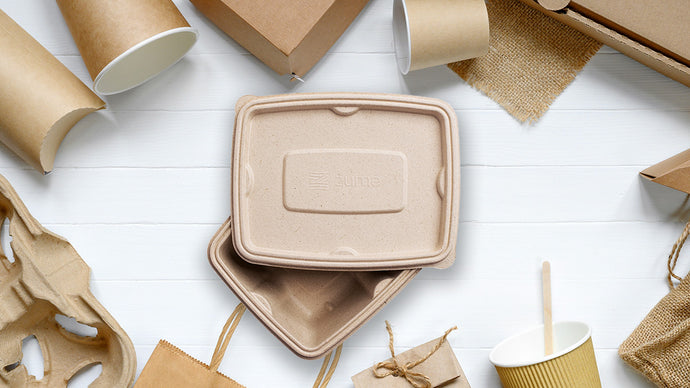 What Kinds of Eco-Friendly Packaging Options Are There?