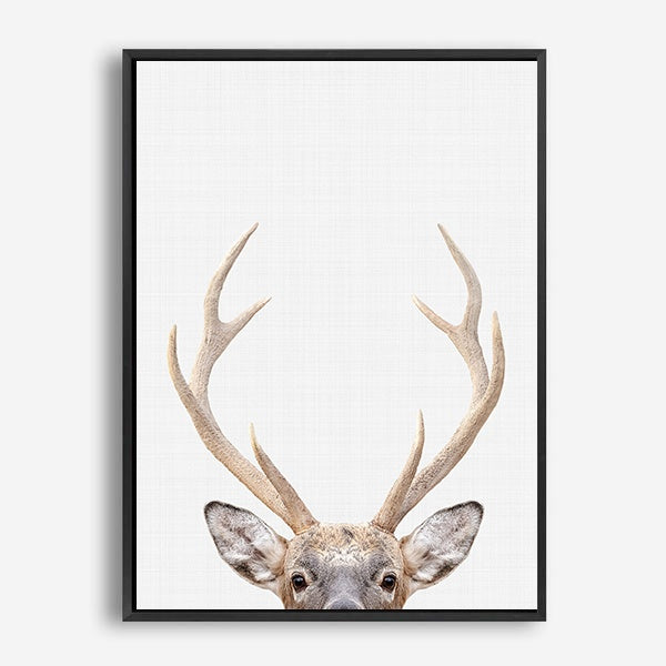 ANTLER CANVAS