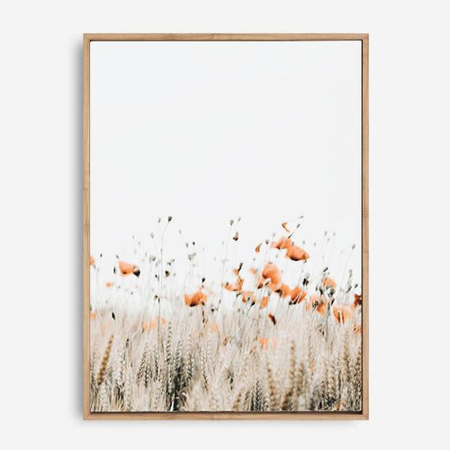 POPPIES II CANVAS