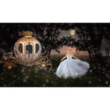 Load image into Gallery viewer, Princess Forest Digital Backdrop