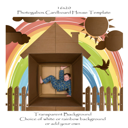Photogabox Cardboard Box 1 Box -  Roof Renos 16x20