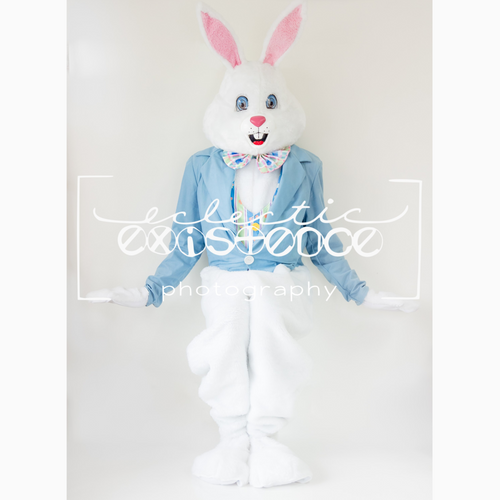 6 Bunny Bundle - On White Background