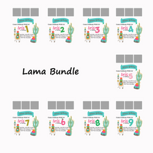 Load image into Gallery viewer, Lama/Cactus Themed Birthday Bundle