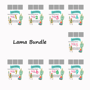 Lama/Cactus Themed Birthday Bundle