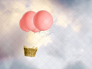 Balloon Basket (4 Backgrounds)