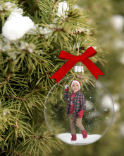 Load image into Gallery viewer, Snowglobe Christmas Snowy Branch