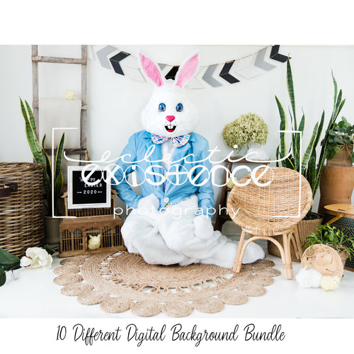 10 Different Easter Bunny Digital Backdrops Bundle