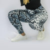 Leggings Piton (2x1)
