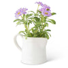 Purple Daisy In White Ceramic Pitcher - Fab Vila