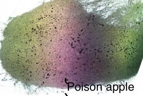 Poison Apple Red-Gold-Green-Red Pearl Chameleon Pigment 3g with spoon