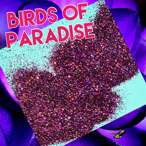 Birds of Paradise Holographic
