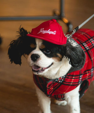 LEINENKUGEL'S PET HAT