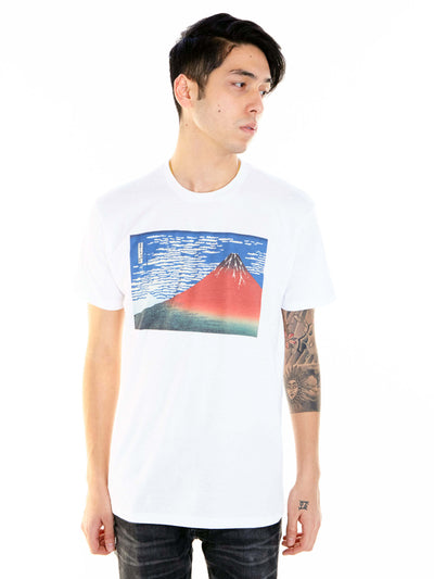 White Japanese ukiyo-e fuji graphic tee by Los Angeles brand Popkiller.