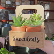 Load and play video in Gallery viewer, Succulents The Box