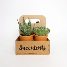 Load image into Gallery viewer, Succulents The Box