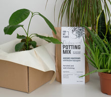 Load image into Gallery viewer, Professional Potting Mix (for most loved houseplants)
