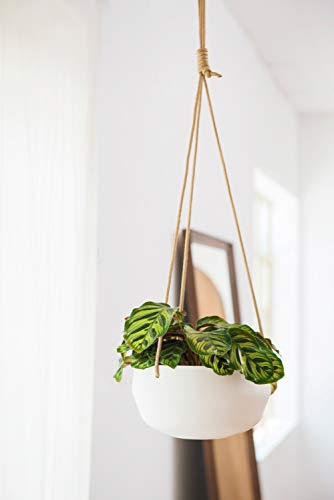 Mkono 8 Inch Ceramic Hanging Planter for Indoor Plants Modern Outdoor Porcelain Hanging Plant Holder Geometric Flower Pot with Polyester Rope Hanger for Herbs Ferns Ivy, White