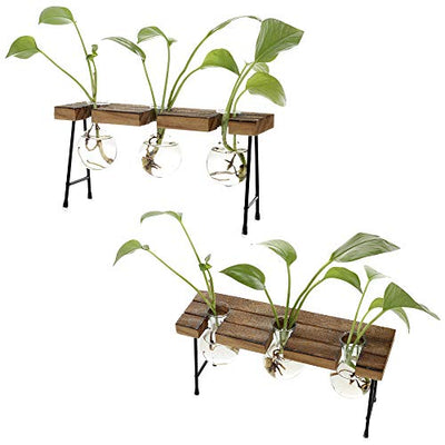 TITA-DONG Hydroponic Plant Vases with Wooden Stand, Plant Glass Container Stand Glass Planter Bulb Vase Metal Rotating Holder Air Plant Planter Office and Home Desktop Decoration