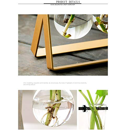 Ivolador Desktop Plant Terrarium Stand Modern Tabletop Glass Planter Flower Bulb Vase with Metal Swivel Holder (Golden)