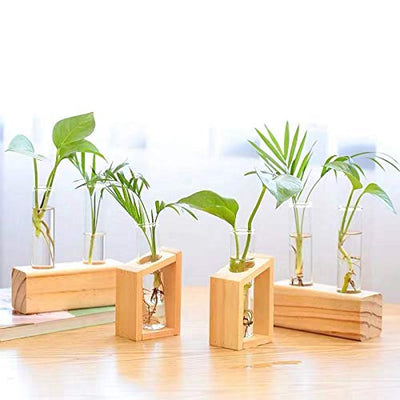 Ivolador Crystal Glass Test Tube Plant Terrarium Vase Flower Pots for Hydroponic Plants Home Garden Decoration