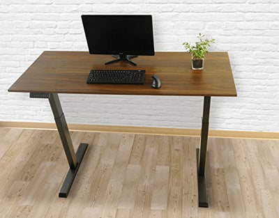TechOrbits Electric Standing Desk Frame 60 x 24 Inch Tabletop - Motorized Workstation Two Leg Stand Up Desk with Memory Settings and Telescopic Sit Stand Height Adjustment (Black Frame/Wood Top)