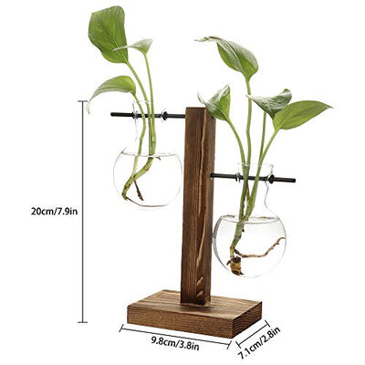 TRIEtree Glass Planter Bulb Vase Hydroponics Plants Flowerpot with Wooden Stand for Home Garden Wedding Decor