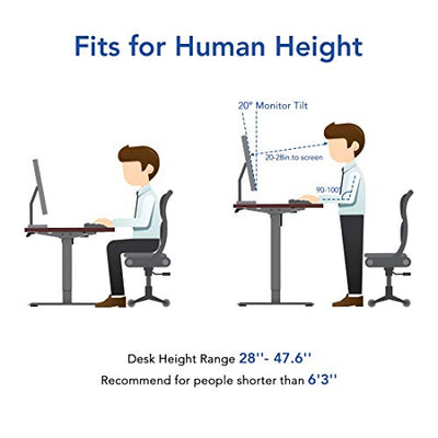 Flexispot Standing Desk, 48 x 30 Inches Height Adjustable Desk, Electric Sit Stand Desk Home Office Desks, Whole-Piece Desk Board (Black Frame + 48 in Blacktop)