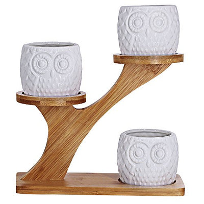 3pcs Owl Succulent Pots with 3 Tier Bamboo Saucers Stand Holder - White Modern Decorative Ceramic Flower Planter Plant Pot with Drainage - Home Office Desk Garden Mini Cactus Pot Indoor Decoration
